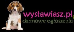 Logo darmowe ogłoszenia lokalne Wystawiasz.pl.