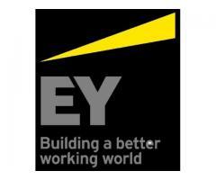 Jak wygląda praca w ERNST & YOUNG (EY)?