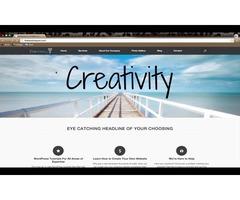 Sklep internetowy, strona www, kampania reklamowa i marketingowa