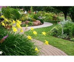 Tworzenie ogrodów, prace ziemne, nawodnienia, utrzymanie zieleni w Warszawie